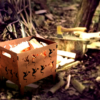 Draken vuurkorf in bos