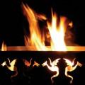 Draken vuurkorf met vuur